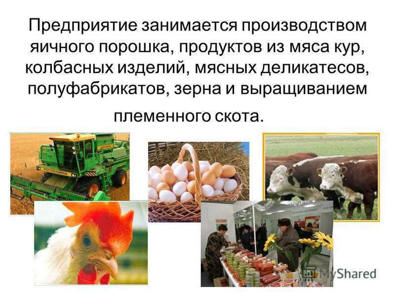 Предприятие занимается производством яичного порошка, продуктов из мяса кур, колбасных изделий, мясных деликатесов, полуфабрикатов, зерна и выращиванием племенного скота.