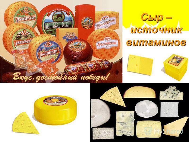 Сыр – источник витаминов