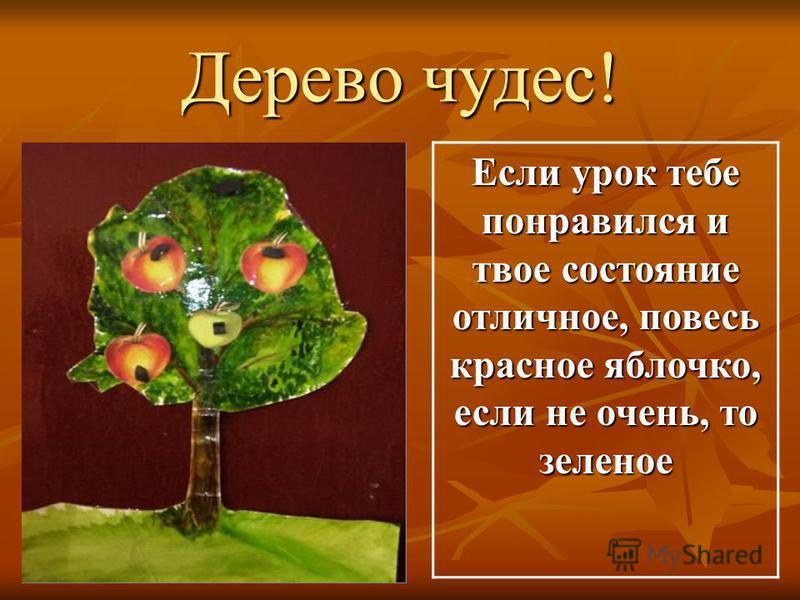Дерево чудес! Если урок тебе понравился и твое состояние отличное, повесь красное яблочко, если не очень, то зеленое
