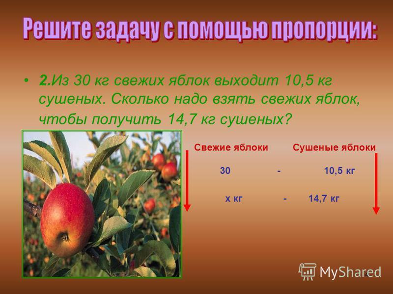 4 2. Из 30 кг свежих яблок выходит 10,5 кг сушеных. Сколько надо взять свежих яблок, чтобы получить 14,7 кг сушеных? Свежие яблоки Сушеные яблоки 30 - 10,5 кг х кг - 14,7 кг