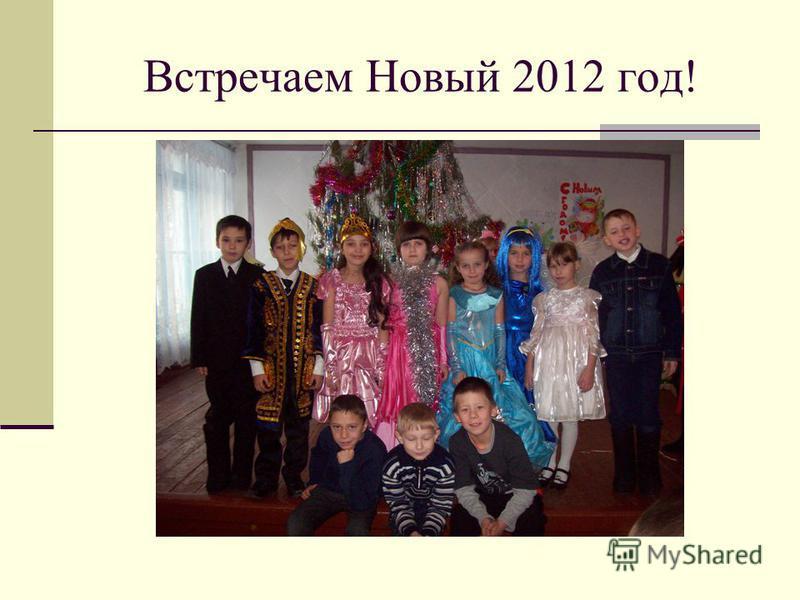 Встречаем Новый 2012 год!
