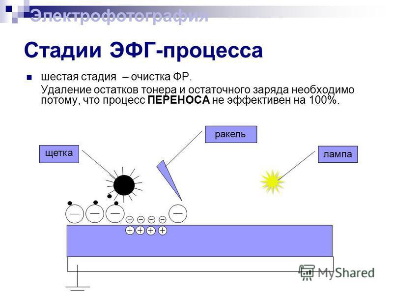 Стадии ЭФГ-процесса шестая стадия – очистка ФР. Удаление остатков тонера и остаточного заряда необходимо потому, что процесс ПЕРЕНОСА не эффективен на 100%. ракель щетка лампа Электрофотография