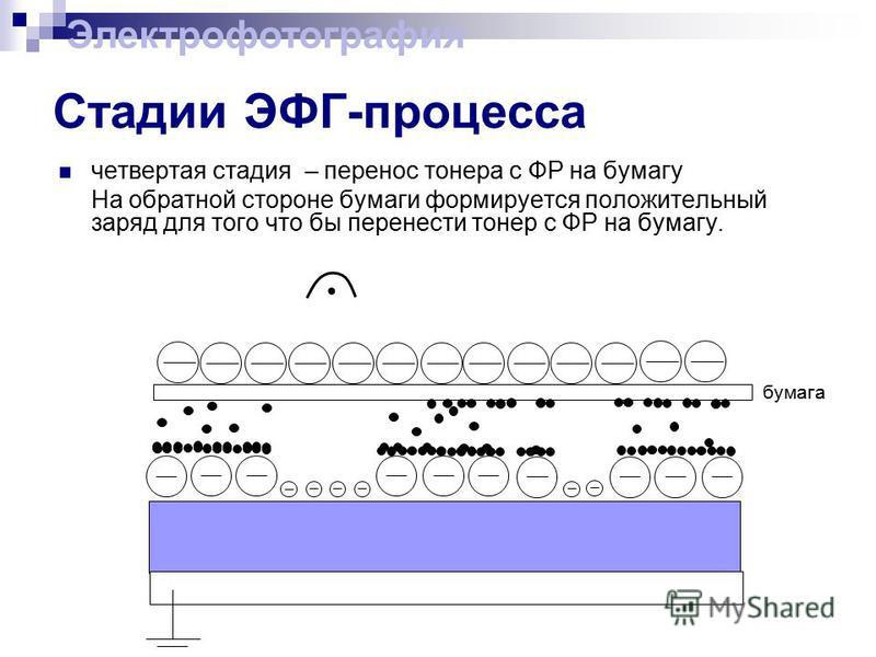 Стадии ЭФГ-процесса четвертая стадия – перенос тонера с ФР на бумагу На обратной стороне бумаги формируется положительный заряд для того что бы перенести тонер с ФР на бумагу. Электрофотография бумага