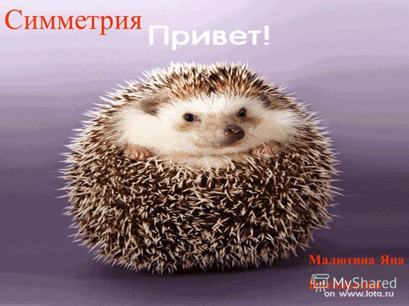 Симметрия Малютина Яна Витальевна