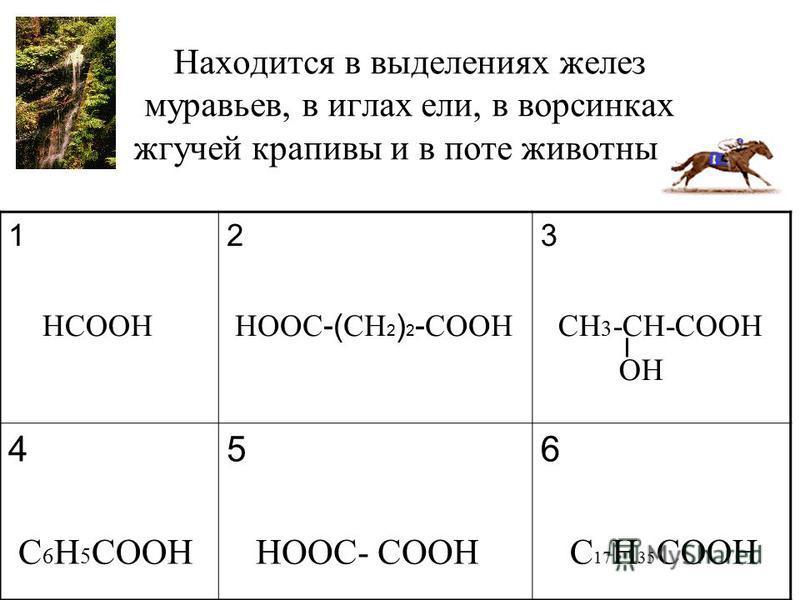 Находится в выделениях желез муравьев, в иглах ели, в ворсинках жгучей крапивы и в поте животных. 1 HCOOH 2 HOOC -( CH 2 ) 2 - COOH 3 CH 3 -CH-COOH OH 4 C 6 H 5 COOH 5 HOOC- COOH 6 C 17 H 35 COOH