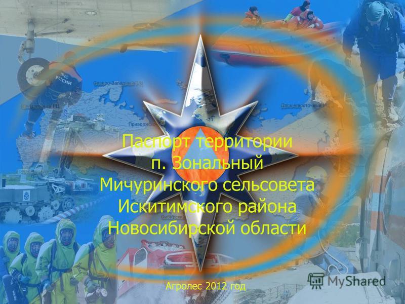 Паспорт территории п. Зональный Мичуринского сельсовета Искитимского района Новосибирской области Агролес 2012 год
