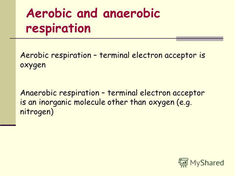 Aerobic and anaerobic respiration Aerobic respiration – terminal electron acceptor is oxygen Anaerobic respiration – terminal electron acceptor is an inorganic molecule other than oxygen (e.g. nitrogen)