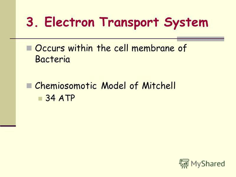 3. Electron Transport System Occurs within the cell membrane of Bacteria Chemiosomotic Model of Mitchell 34 ATP