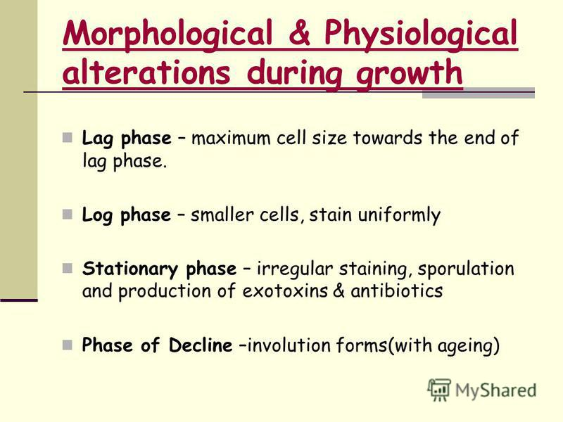 Morphological & Physiological alterations during growth Lag phase – maximum cell size towards the end of lag phase. Log phase – smaller cells, stain uniformly Stationary phase – irregular staining, sporulation and production of exotoxins & antibiotic