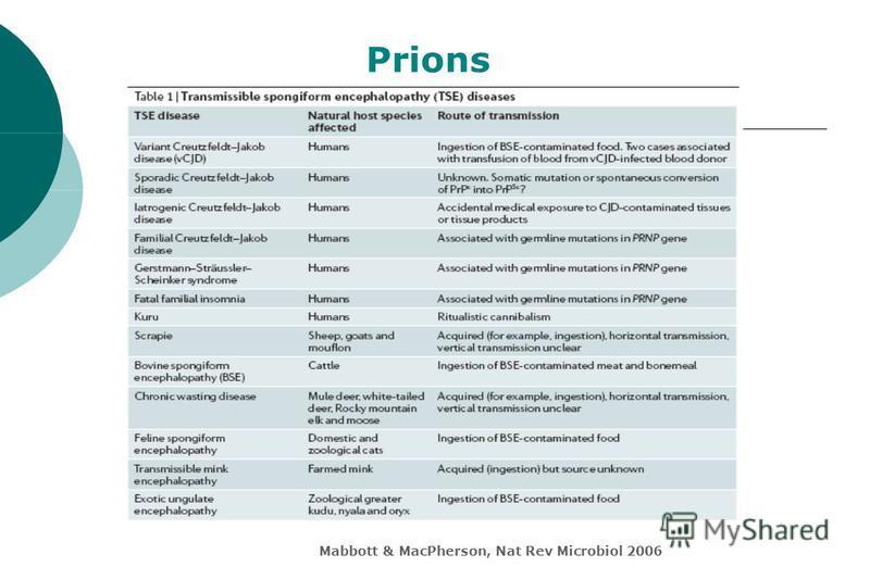 Mabbott & MacPherson, Nat Rev Microbiol 2006 Prions