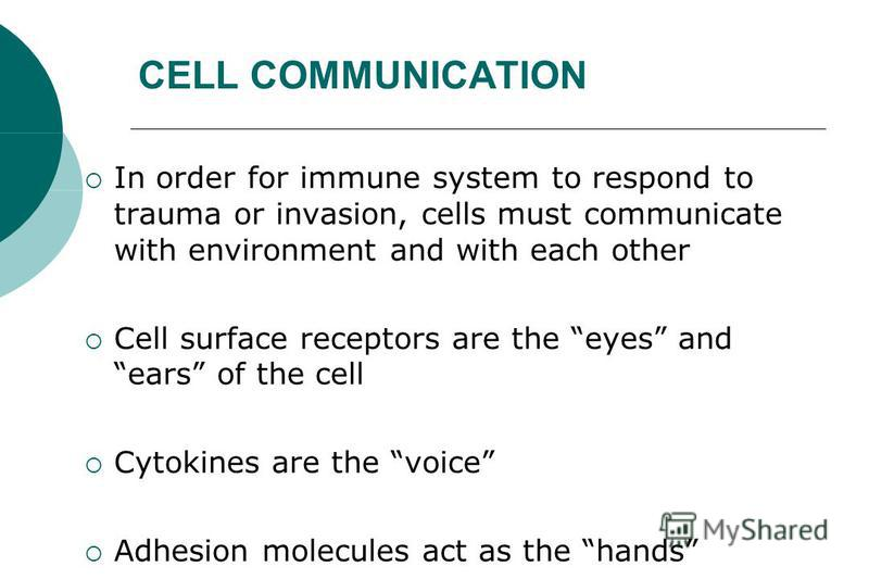 In order for immune system to respond to trauma or invasion, cells must communicate with environment and with each other Cell surface receptors are the eyes and ears of the cell Cytokines are the voice Adhesion molecules act as the hands CELL COMMUNI