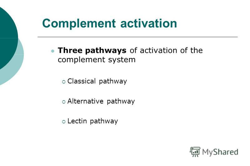 Complement activation Three pathways of activation of the complement system Classical pathway Alternative pathway Lectin pathway