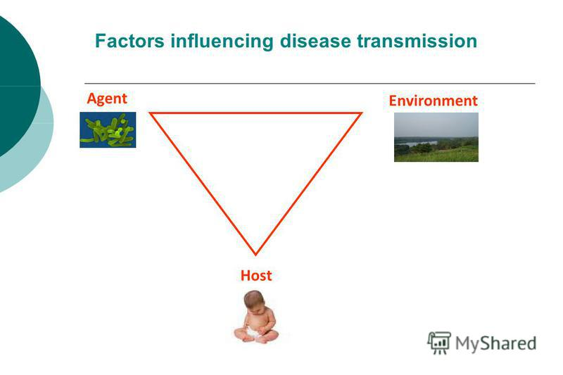Host Agent Environment Factors influencing disease transmission