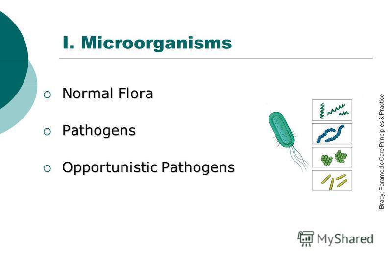 I. Microorganisms Normal Flora Normal Flora Pathogens Pathogens Opportunistic Pathogens Opportunistic Pathogens Brady; Paramedic Care Principles & Practice