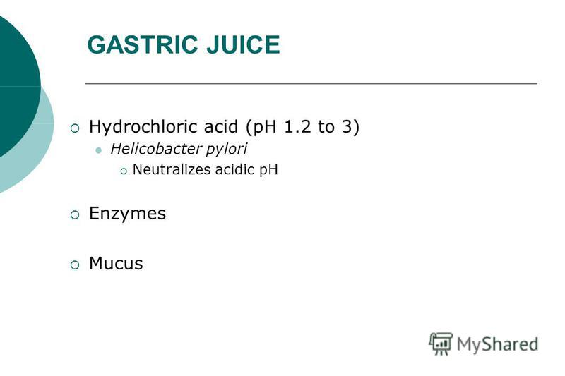 GASTRIC JUICE Hydrochloric acid (pH 1.2 to 3) Helicobacter pylori Neutralizes acidic pH Enzymes Mucus