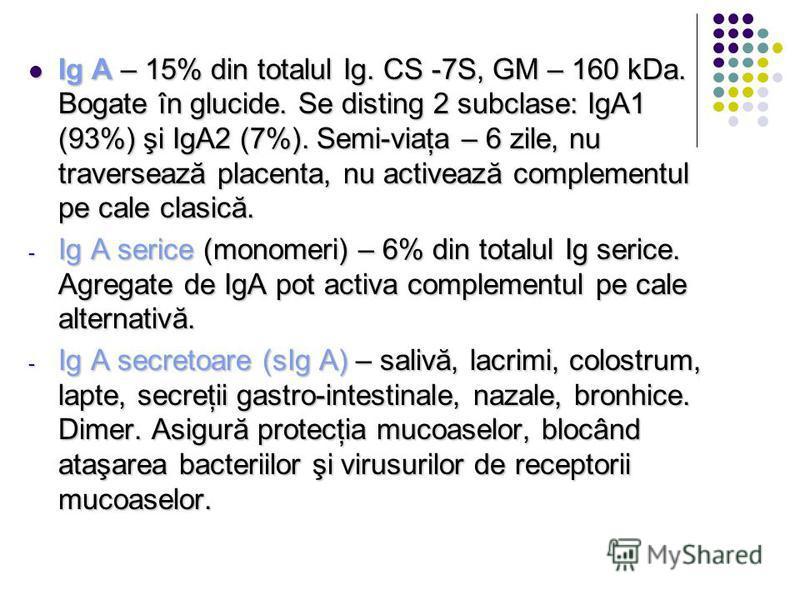 Ig A – 15% din totalul Ig. CS -7S, GM – 160 kDa. Bogate în glucide. Se disting 2 subclase: IgA1 (93%) şi IgA2 (7%). Semi-viaţa – 6 zile, nu traversează placenta, nu activează complementul pe cale clasică. Ig A – 15% din totalul Ig. CS -7S, GM – 160 k