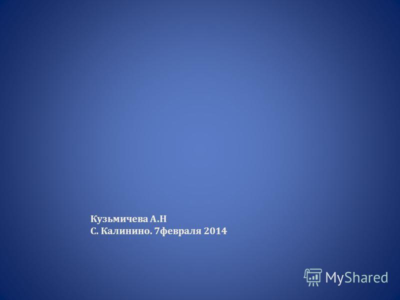 Кузьмичева А.Н С. Калинино. 7 февраля 2014