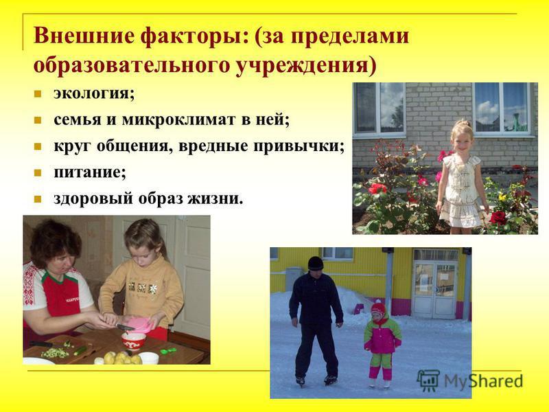 Внешние факторы: (за пределами образовательного учреждения) экология; семья и микроклимат в ней; круг общения, вредные привычки; питание; здоровый образ жизни.