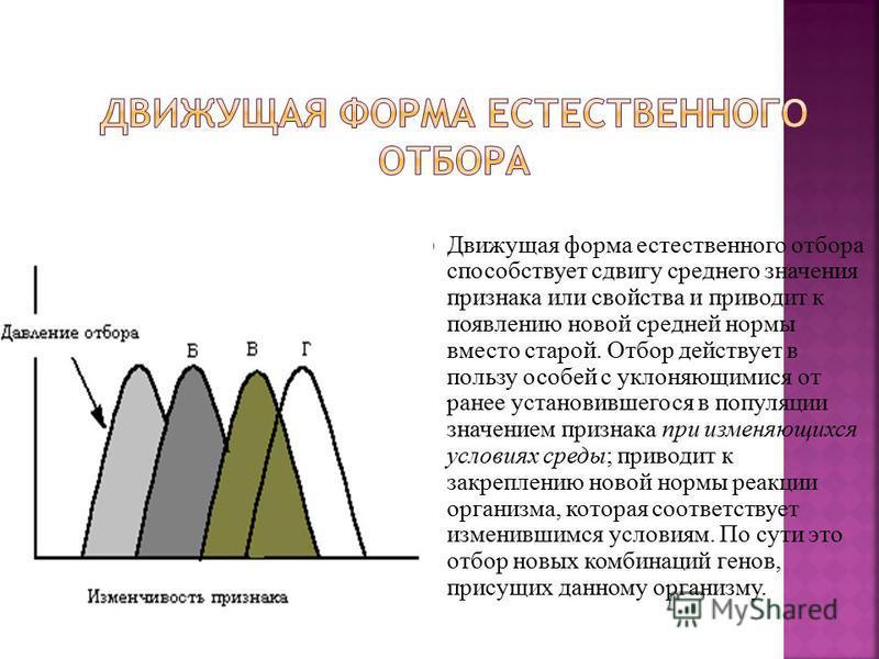 Движущая форма естественного отбора способствует сдвигу среднего значения признака или свойства и приводит к появлению новой средней нормы вместо старой. Отбор действует в пользу особей с уклоняющимися от ранее установившегося в популяции значением п