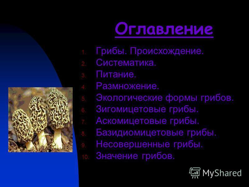 Оглавление 1. Грибы. Происхождение. 2. Систематика. 3. Питание. 4. Размножение. 5. Экологические формы грибов. 6. Зигомицетовые грибы. 7. Аскомицетовые грибы. 8. Базидиомицетовые грибы. 9. Несовершенные грибы. 10. Значение грибов.