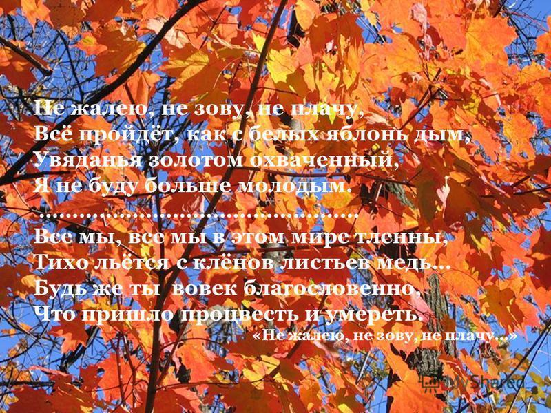 Не жалею, не зову, не плачу, Всё пройдёт, как с белых яблонь дым, Увяданья золотом охваченный, Я не буду больше молодым. ………………………………………… Все мы, все мы в этом мире тленны, Тихо льётся с клёнов листьев медь… Будь же ты вовек благословенно, Что пришло