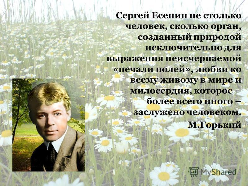 Сергей Есенин не столько человек, сколько орган, созданный природой исключительно для выражения неисчерпаемой «печали полей», любви ко всему живому в мире и милосердия, которое – более всего иного – заслужено человеком. М.Горький