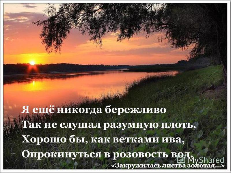 Я ещё никогда бережливо Так не слушал разумную плоть, Хорошо бы, как ветками ива, Опрокинуться в розовость вод. «Закружилась листва золотая…»