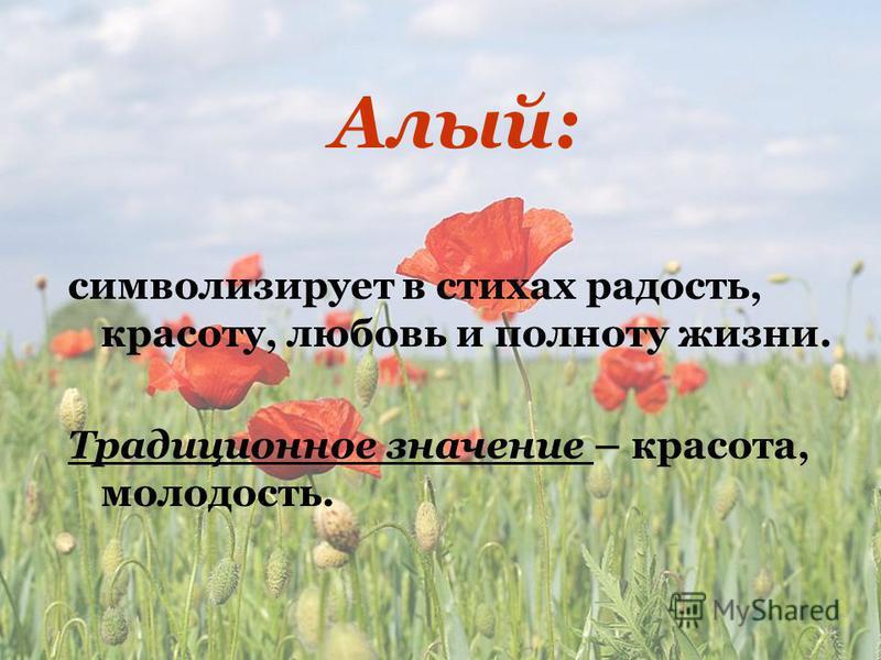 Алый: символизирует в стихах радость, красоту, любовь и полноту жизни. Традиционное значение – красота, молодость.