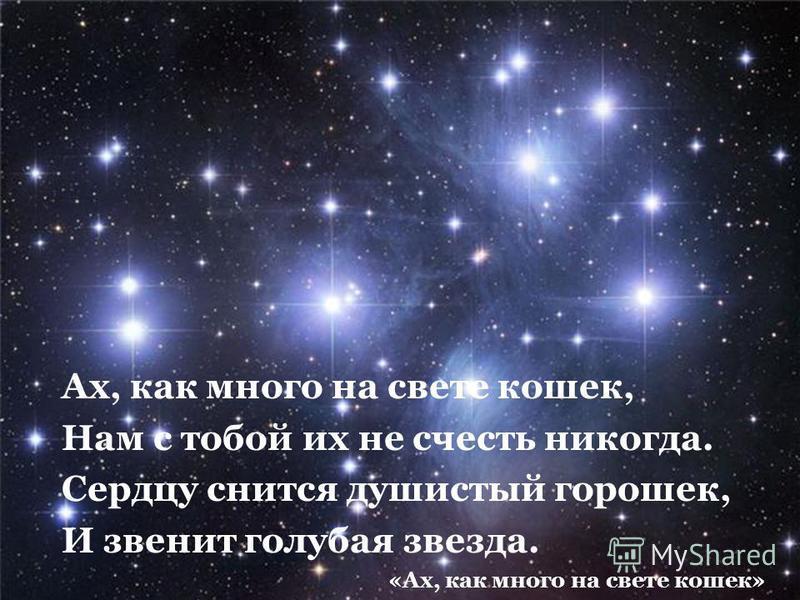 Ах, как много на свете кошек, Нам с тобой их не счесть никогда. Сердцу снится душистый горошек, И звенит голубая звезда. «Ах, как много на свете кошек»