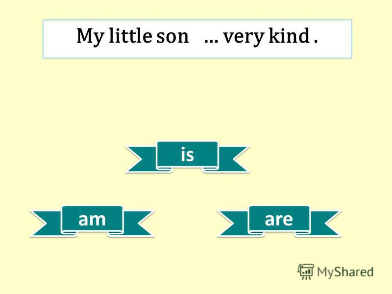 is am are My little son … very kind.