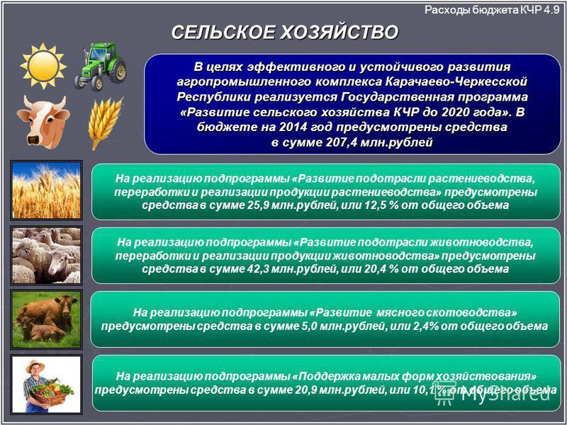 СЕЛЬСКОЕ ХОЗЯЙСТВО Расходы бюджета КЧР 4.9 В целях эффективного и устойчивого развития агропромышленного комплекса Карачаево-Черкесской Республики реализуется Государственная программа «Развитие сельского хозяйства КЧР до 2020 года». В бюджете на 201