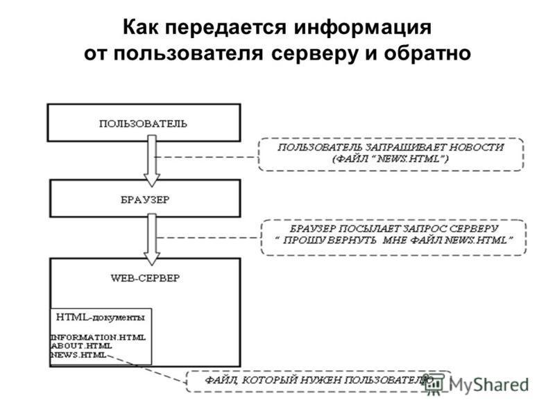 Как передается информация от пользователя серверу и обратно
