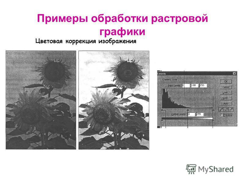 Примеры обработки растровой графики Цветовая коррекция изображения