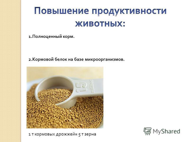 1. Полноценный корм. 2. Кормовой белок на базе микроорганизмов. 1 т кормовых дрожжей= 5 т зерна