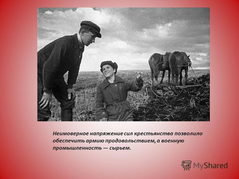 Неимоверное напряжение сил крестьянства позволило обеспечить армию продовольствием, а военную промышленность сырьем.