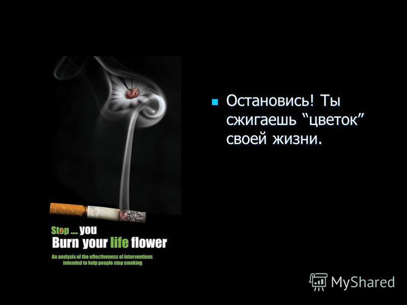 Остановись! Ты сжигаешь цветок своей жизни. Остановись! Ты сжигаешь цветок своей жизни.