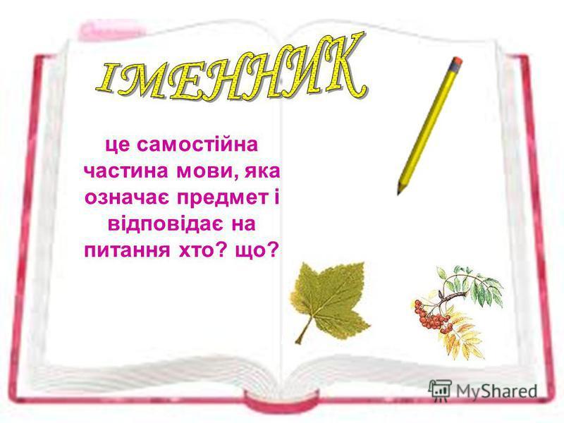 це самостійна частина мови, яка означає предмет і відповідає на питання хто? що?