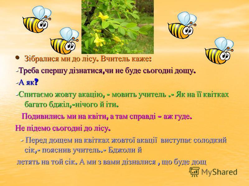 В. Сухомлинський Акація підказала Робота Софієвої Аріни, 4- а, ДГГ 33 4- а, ДГГ 33
