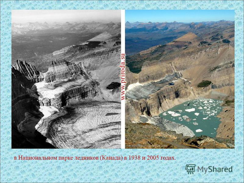 в Национальном парке ледников (Канада) в 1938 и 2005 годах.