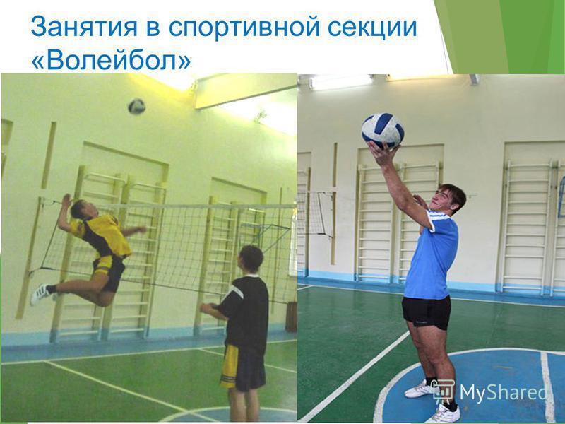 Занятия в спортивной секции «Волейбол»