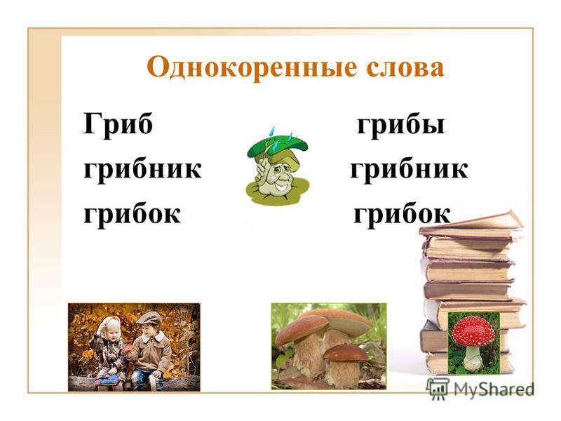 Однокоренные слова Гриб грибы грибник грибок
