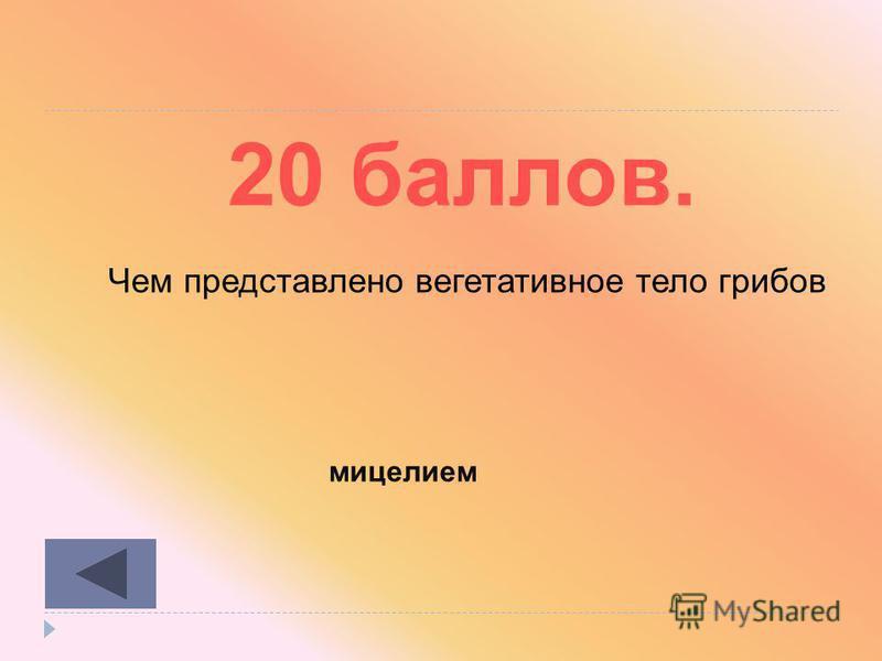 Бактерии 10 20 30 40 50 Грибы 10 20 30 40 50 Растения 1020304050