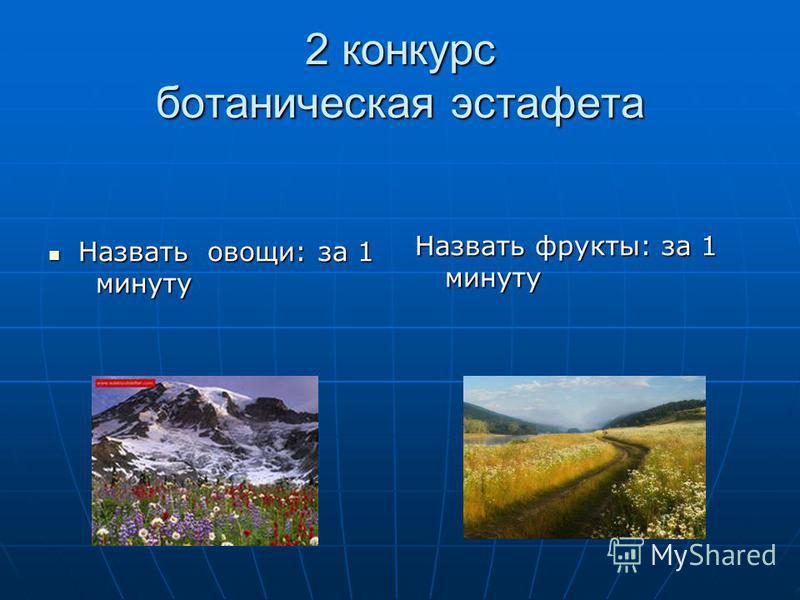2 конкурс ботаническая эстафета Назвать овощи: за 1 Назвать овощи: за 1 минуту минуту Назвать фрукты: за 1 минуту