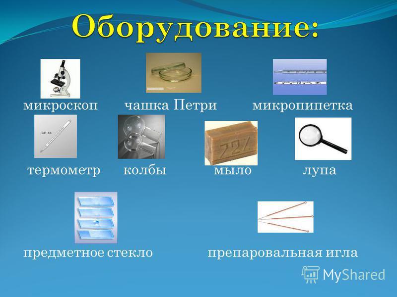 микроскоп чашка Петри микропипетка термометр колбы мыло лупа предметное стекло препаровальная игла