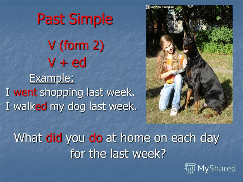 Past Simple V (form 2) V + ed Example: I went shopping last week. I walked my dog last week. What did you do at home on each day for the last week?