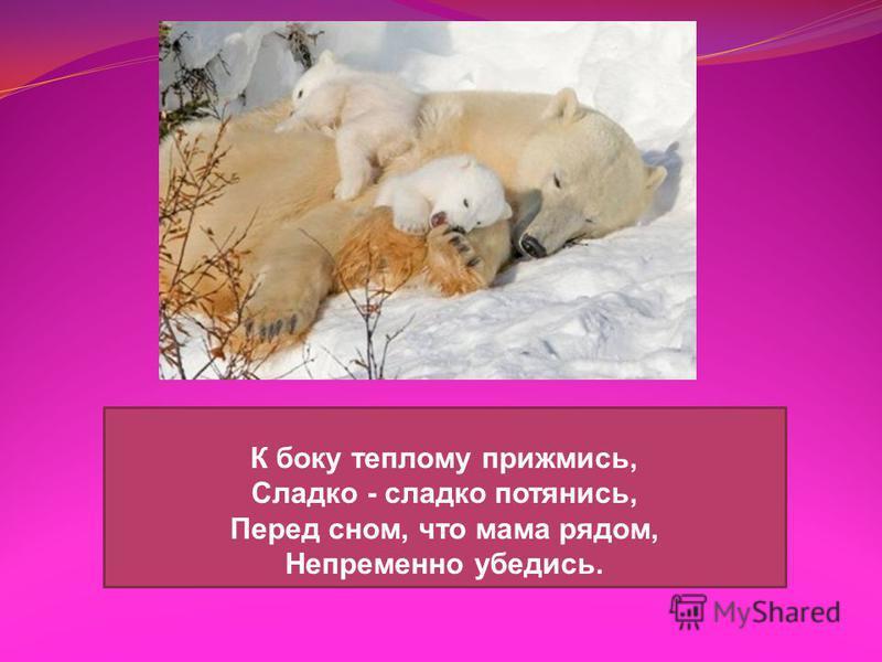 К боку теплому прижмись, Сладко - сладко потянись, Перед сном, что мама рядом, Непременно убедись.