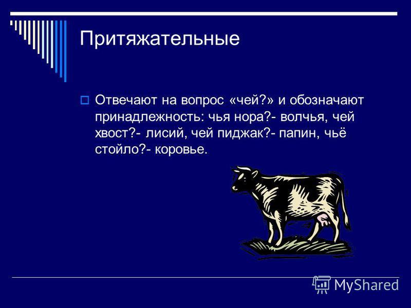 Притяжательные Отвечают на вопрос «чей?» и обозначают принадлежность: чья нора?- волчья, чей хвост?- лисий, чей пиджак?- папин, чьё стойло?- коровье.