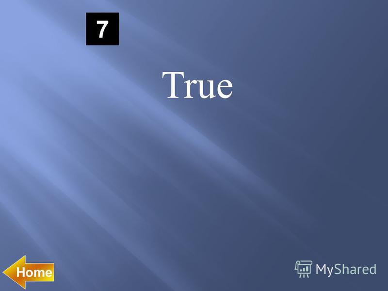 7 True Home