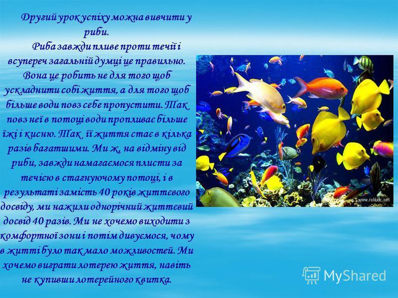 Другий урок успіху можна вивчити у риби. Риба завжди пливе проти течії і всупереч загальній думці це правильно. Вона це робить не для того щоб ускладнити собі життя, а для того щоб більше води повз себе пропустити. Так повз неї в потоці води проплива