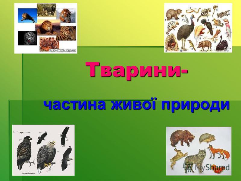 Тварини- Тварини- частина живої природи частина живої природи